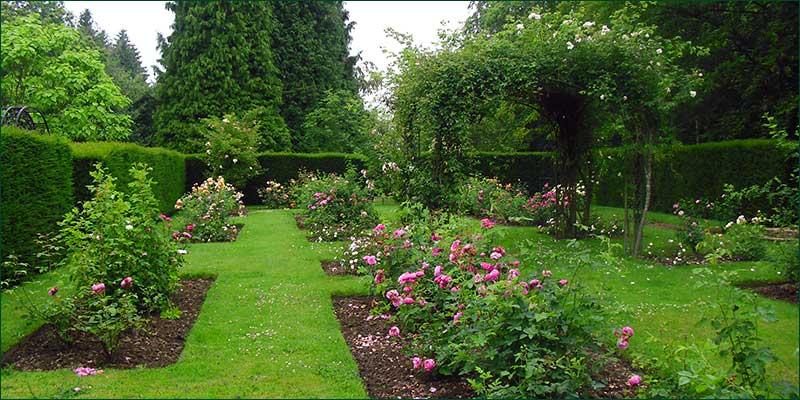Rose Garden, Hascombe, Godalming, Surrey